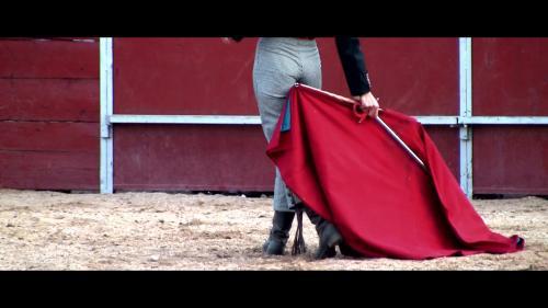 SexArt - E113-2013-02-23-.Presley.Hart.El.Matador.XXX.1080p.MP4-KTR